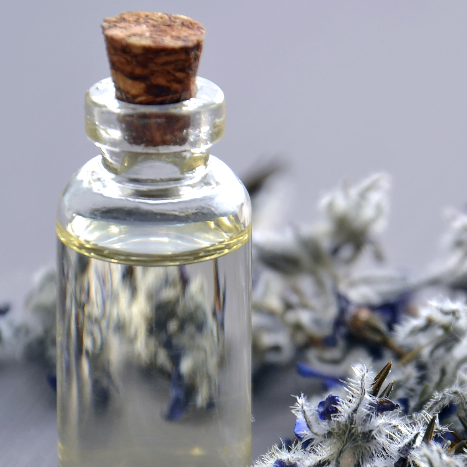 essential oil bottle lavender